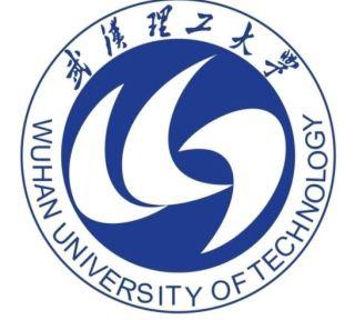 wuhan-logo-01
